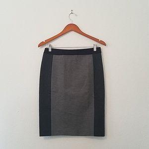 Ann Taylor Bodycon Colorblock Skirt